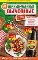 Каталог Дикси (Челябинск) с 20 апреля по 10 мая 2017 («Дачные-удачные выходные»)