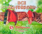 Каталог Пятерочка (Челябинск) с 20 апреля по 17 мая 2017 («Все на пикник»)