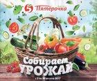 Каталог Пятерочка (Ижевск) с 3 по 24 августа 2017 («Собирай урожай»)
